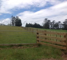 Farm, stockyards, cattleyards Fences